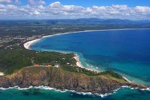 East Coast Bush Regeneration - Byron Bay
